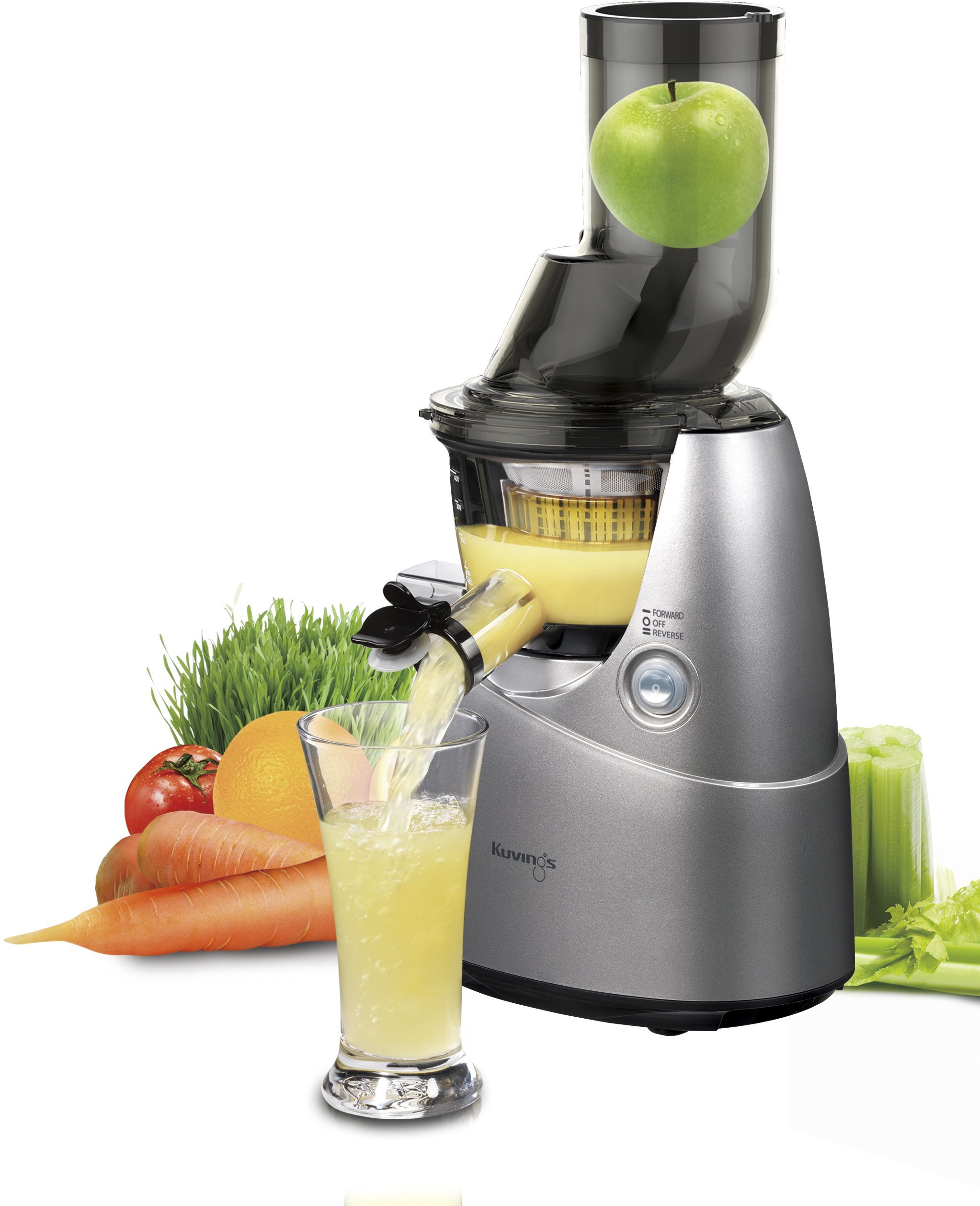 Witt slow juicer